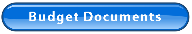 FINAL BLUE WEB BUTTON - FINANCE PORTAL - BUDGET DOCS.png