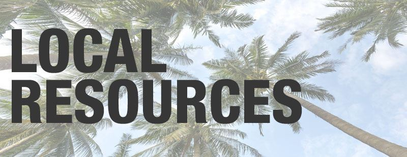 Image with palm trees that says Local Resources